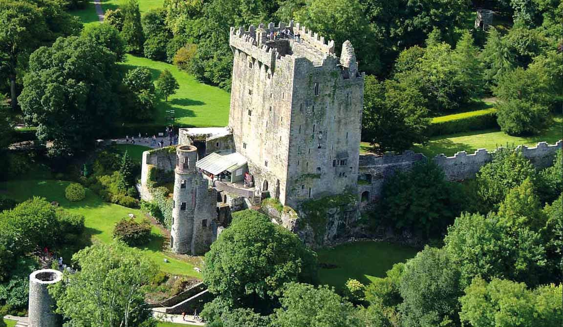 Blarney Castle conservation